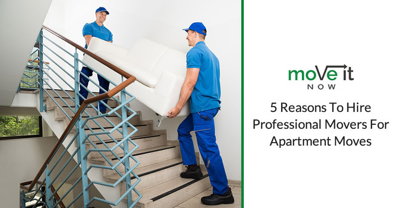 5 reasons to hire the professional movers